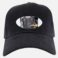 PugTales Baseball Hat