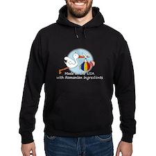 Stork Baby Romania USA Hoodie