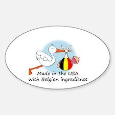 Stork Baby Belgium USA Oval Decal