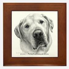 Max, Lab-Bull Terrier Mix Framed Tile