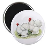 "Cochins White Pair 2.25"" Magnet (10 pack)"