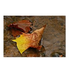 Autumn Leaf Postcards (Package of 8)