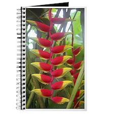 Kew Flower Photo Journal