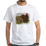 Cochins Golden Laced White T-Shirt