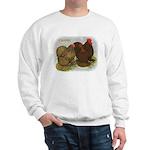 Cochins Golden Laced Sweatshirt