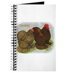 Cochins Golden Laced Journal
