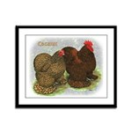 Cochins Golden Laced Framed Panel Print