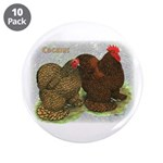 "Cochins Golden Laced 3.5"" Button (10 pack)"