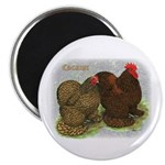 "Cochins Golden Laced 2.25"" Magnet (100 pack)"