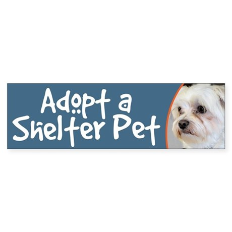 Adopt a Shelter Pet - Maltese Bumper Sticker