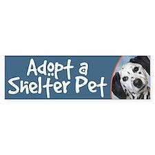 Adopt a Shelter Pet bumper sticker - dalmatian
