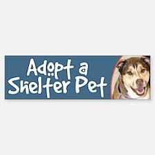 Adopt a Shelter Pet bumper sticker- malamute mix
