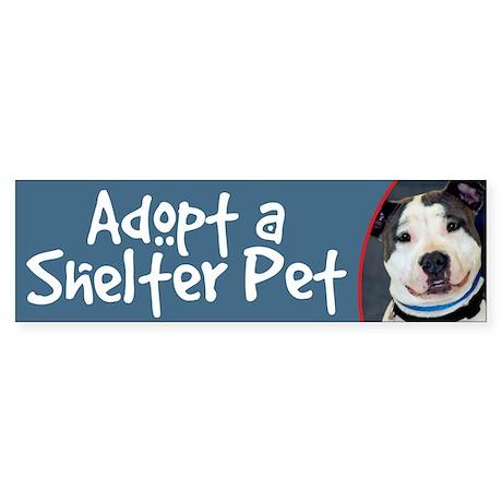 Adopt a Shelter Pet - Amstaff Bumper Sticker