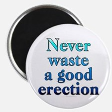 "Never waste a good (2.25"" magnet)"