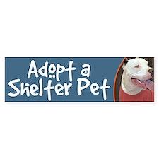 Adopt a Shelter Pet-White Pitbull Bumper Car Sticker
