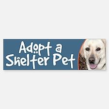 Adopt a Shelter Pet White Lab Bumper Bumper Bumper Sticker