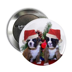 Christmas boxer puppies 2.25