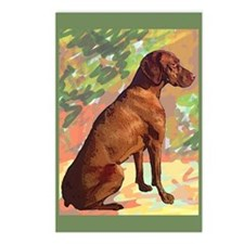 Vizsla portrait Postcards (Package of 8)