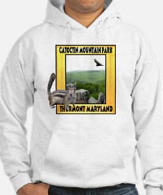 Catoctin Mountain Park Hoodie