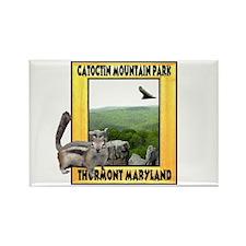 Catoctin Mountain Park Rectangle Magnet