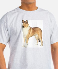 Smooth Collie Gifts Ash Grey T-Shirt