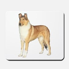 Smooth Collie Gifts Mousepad