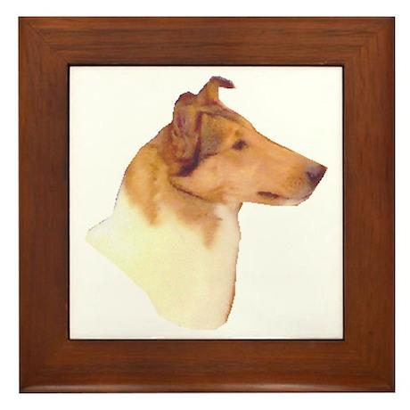 Smooth Collie Gifts Framed Tile