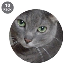 Gray Cat Love 3.5