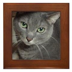 Gray Cat Love Framed Tile