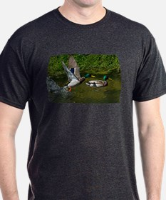 Mallard Take-off T-Shirt