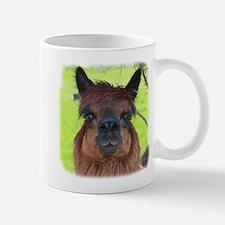 Jamaica Paca Mugs