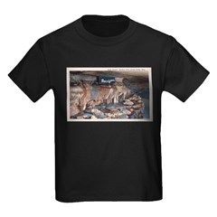 Mystery Cave T