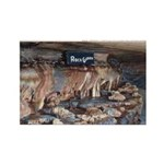 Mystery Cave Rectangle Magnet (10 pack)