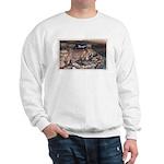 Mystery Cave Sweatshirt