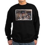 Mystery Cave Sweatshirt (dark)