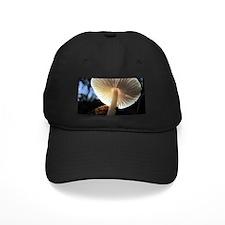 Mushroom Gills Backlit Baseball Hat