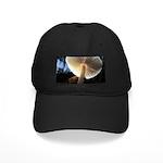 Mushroom Gills Backlit Black Cap