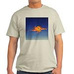 DEC 14TH DAY#348. PRAYER ? Light T-Shirt