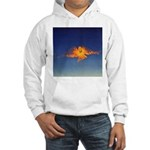 DEC 14TH DAY#348. PRAYER ? Hooded Sweatshirt