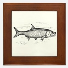 Tarpon Framed Tile