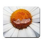 Daisy Flower Baby Mousepad
