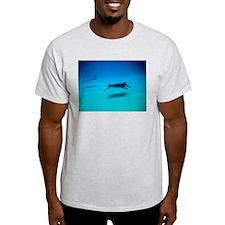 Manta Rays, Hawaii T-Shirt