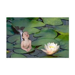 Garden Baby Mermaid Posters