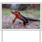 Rough Skinned Newt Yard Sign