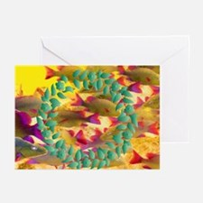Wreath Reef Greeting Cards (Pk of 10)
