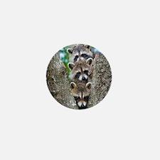 Baby Raccoon Trio Mini Button