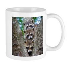 Baby Raccoon Trio Small Mug