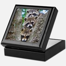 Baby Raccoon Trio Keepsake Box