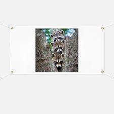 Baby Raccoon Trio Banner