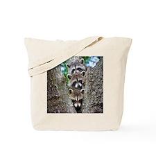 Baby Raccoon Trio Tote Bag